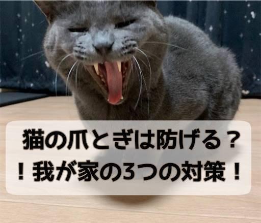 f:id:tabishite_korea:20210329140603j:image