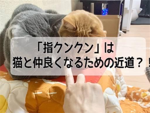 f:id:tabishite_korea:20210401191444j:image