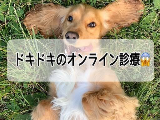 f:id:tabishite_korea:20210401211506j:image