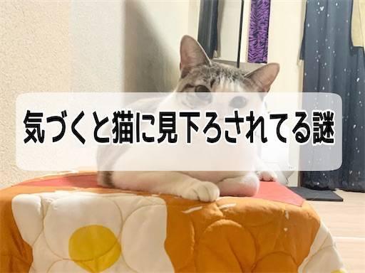 f:id:tabishite_korea:20210402132216j:image
