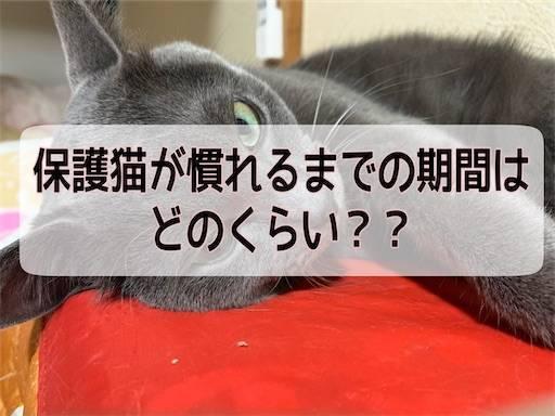 f:id:tabishite_korea:20210406165624j:image