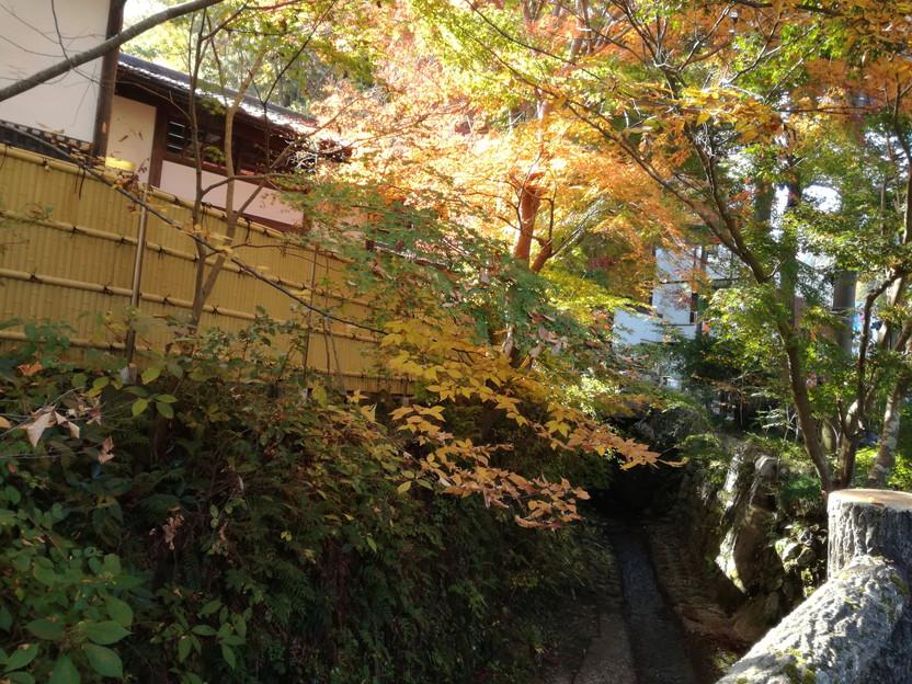 f:id:tabisuru-iwao:20161119212039j:plain