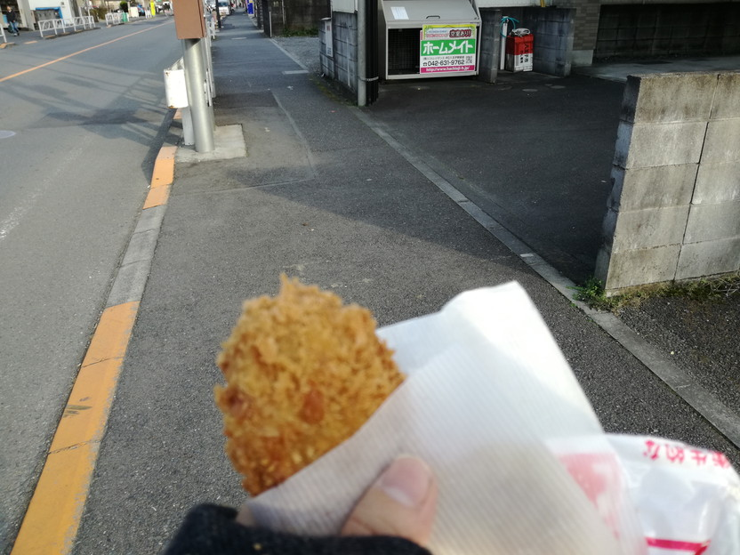 f:id:tabisuru-iwao:20161119214017j:plain