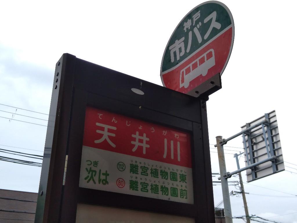 f:id:tabisuru_sumiya:20200531153219j:plain