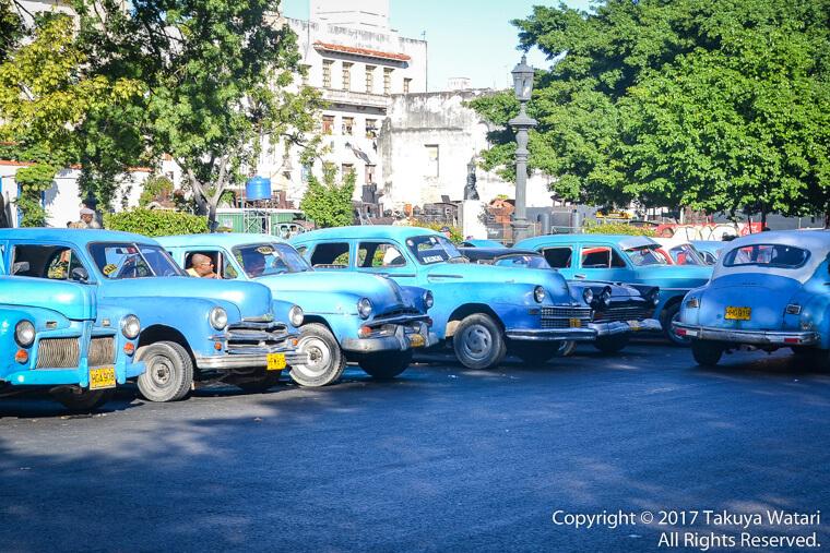 ハバナで水色の車ばかりが置かれていたエリア