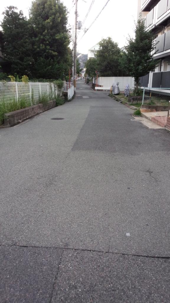 f:id:tabunsakatsu:20150826232439j:plain