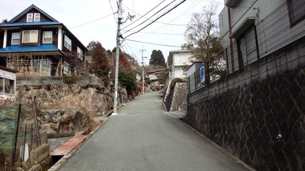 f:id:tabunsakatsu:20170301211033j:plain