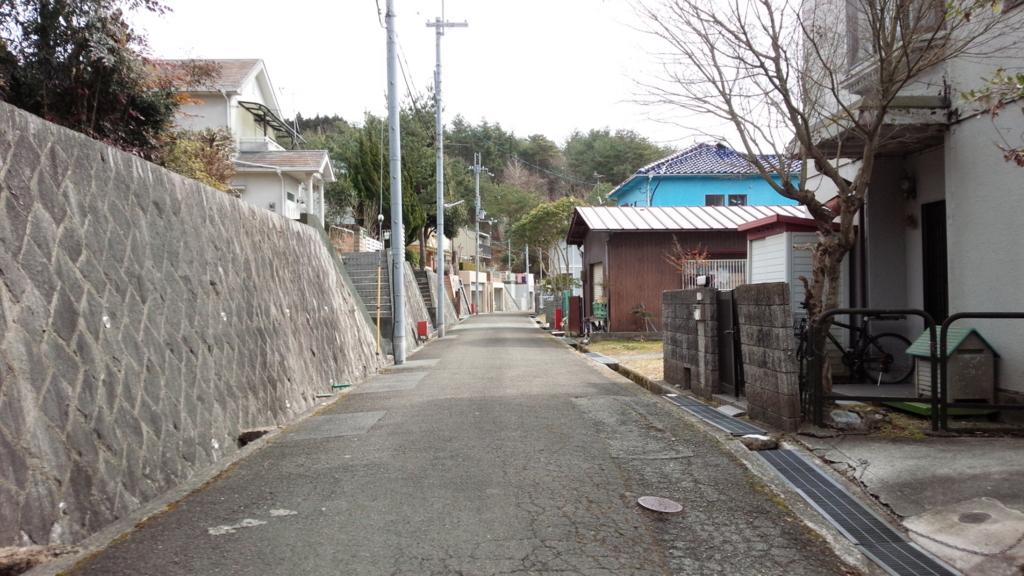 f:id:tabunsakatsu:20170301213922j:plain