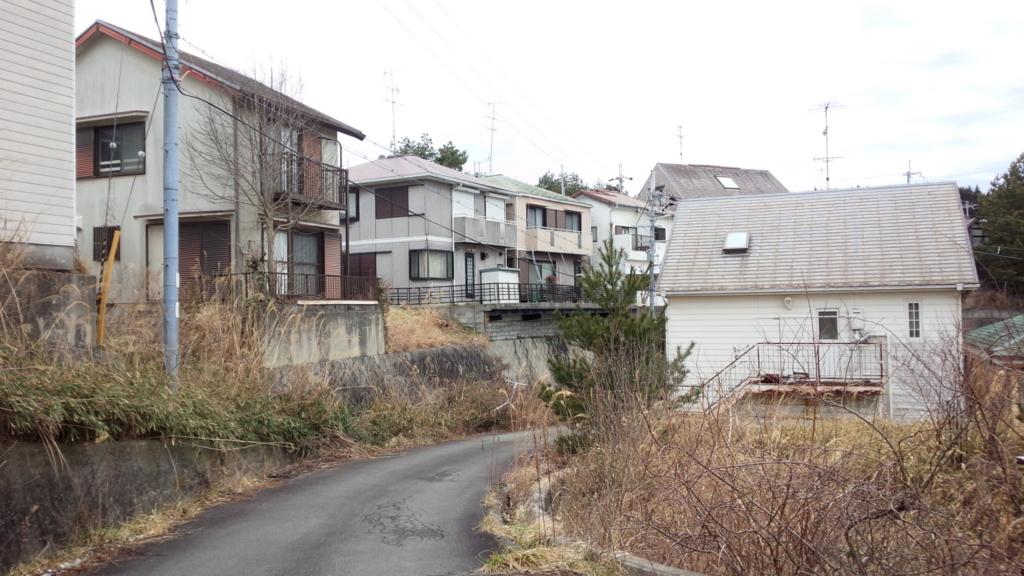 f:id:tabunsakatsu:20170302135118j:plain