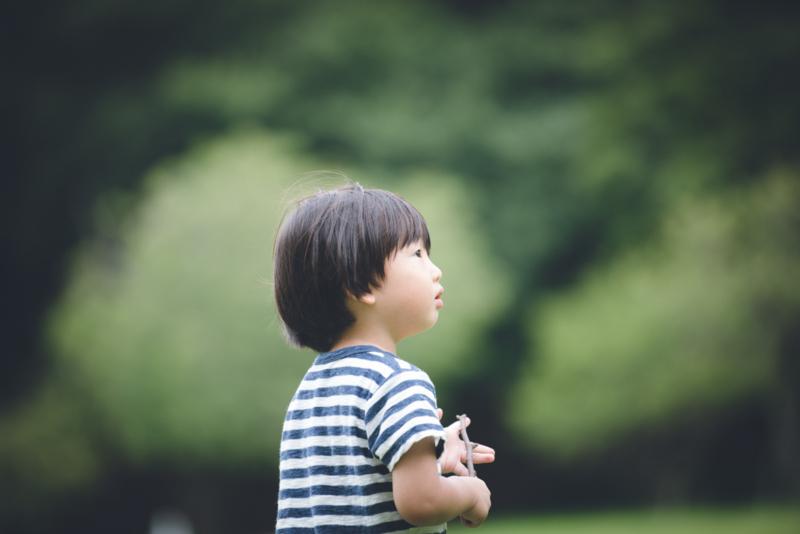 f:id:tachibanachihiro:20170821160013j:plain