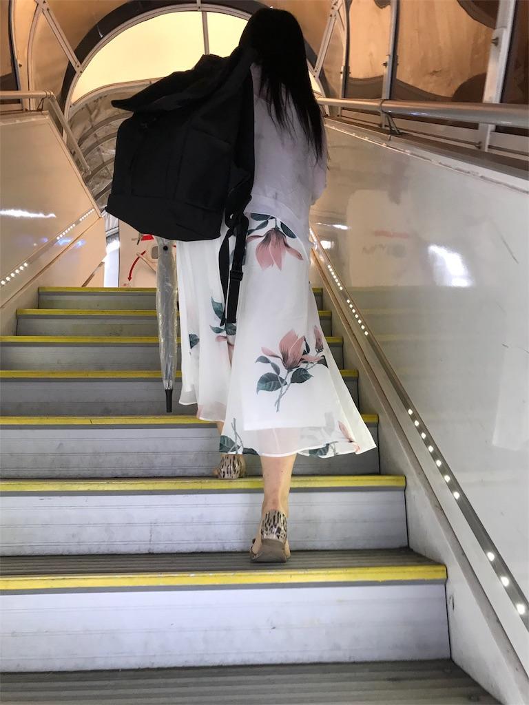 f:id:tachibanaya-shop:20171019160738j:image