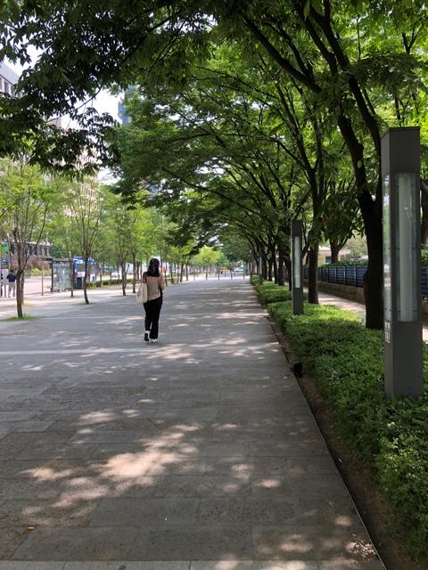 f:id:tachibanaya-shop:20180625122844j:plain