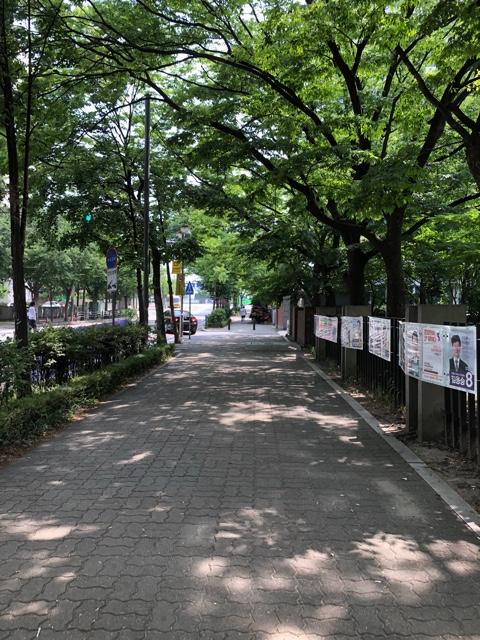 f:id:tachibanaya-shop:20180625123039j:plain
