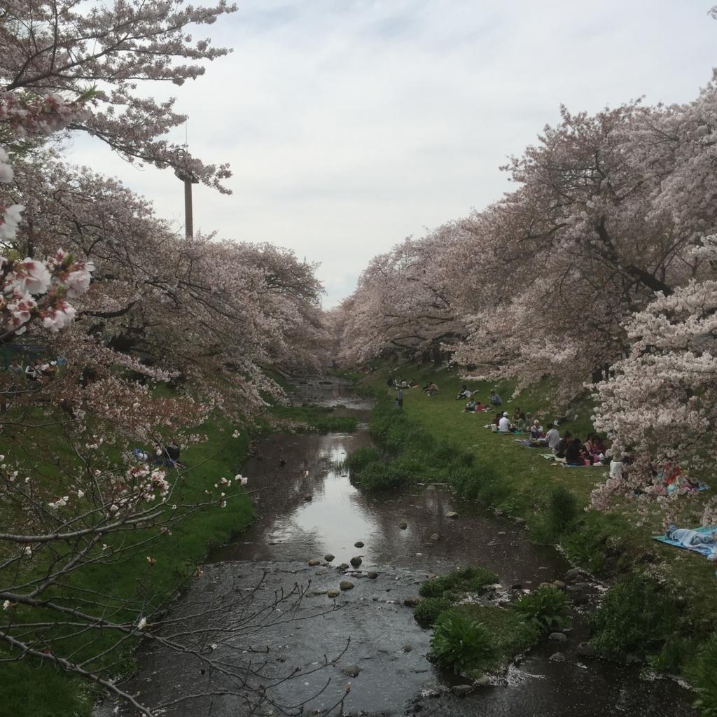 f:id:tachikawanohoshi:20170319213350j:plain