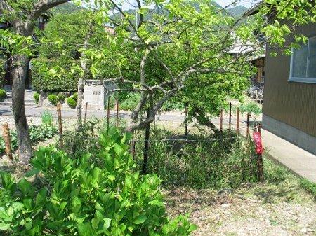 f:id:tachikichi:20110219171236j:image:w220