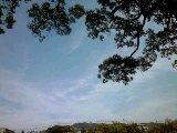 f:id:tadahitori315:20180603161926j:image:left