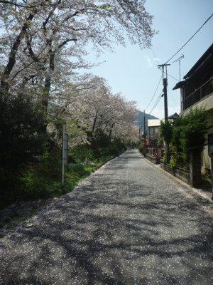 f:id:tadakogu:20170416133927j:image