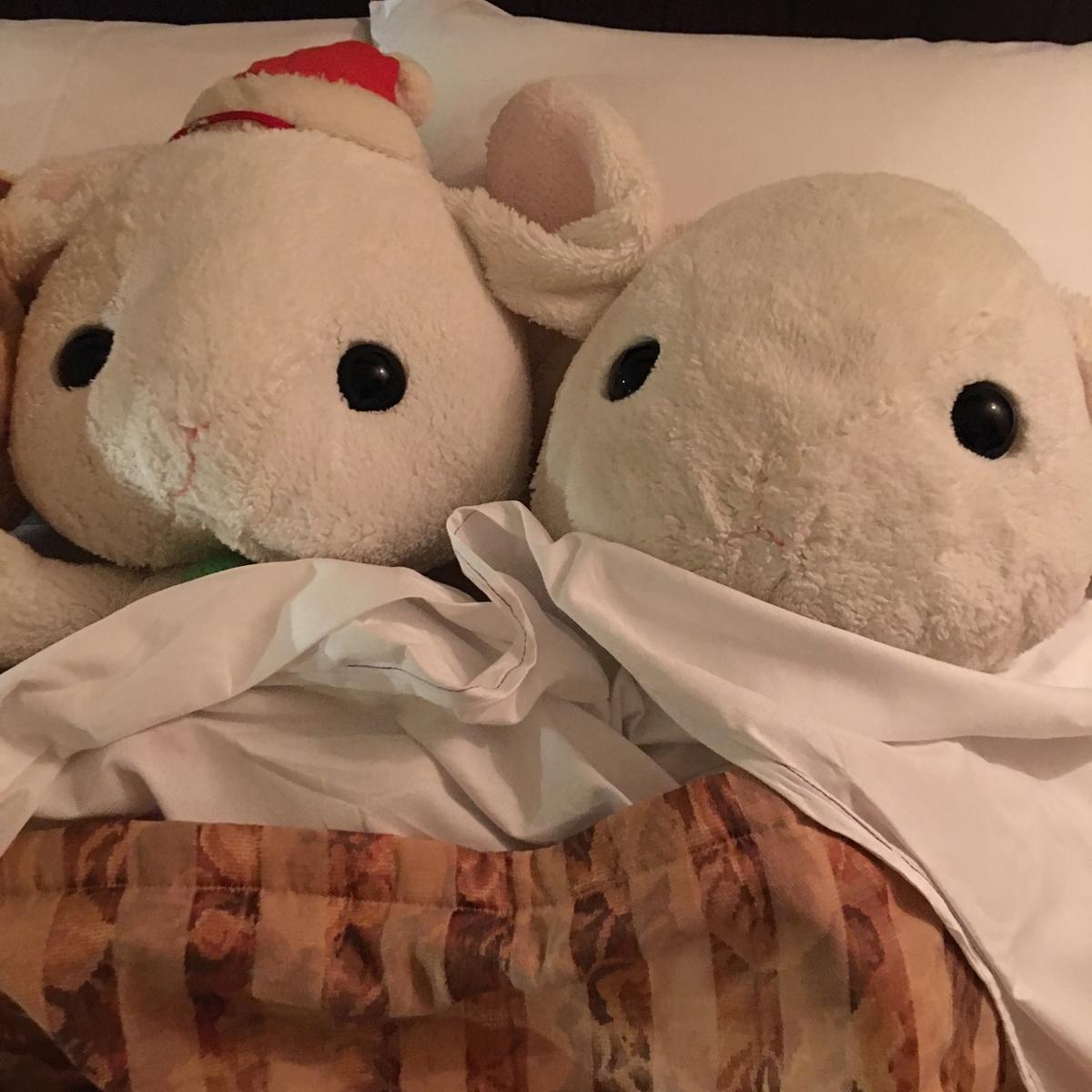うさ次郎とサンティちゃん