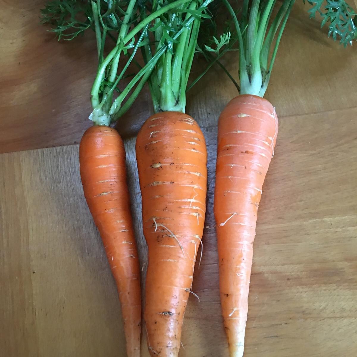 うさ次郎農園の無農薬野菜