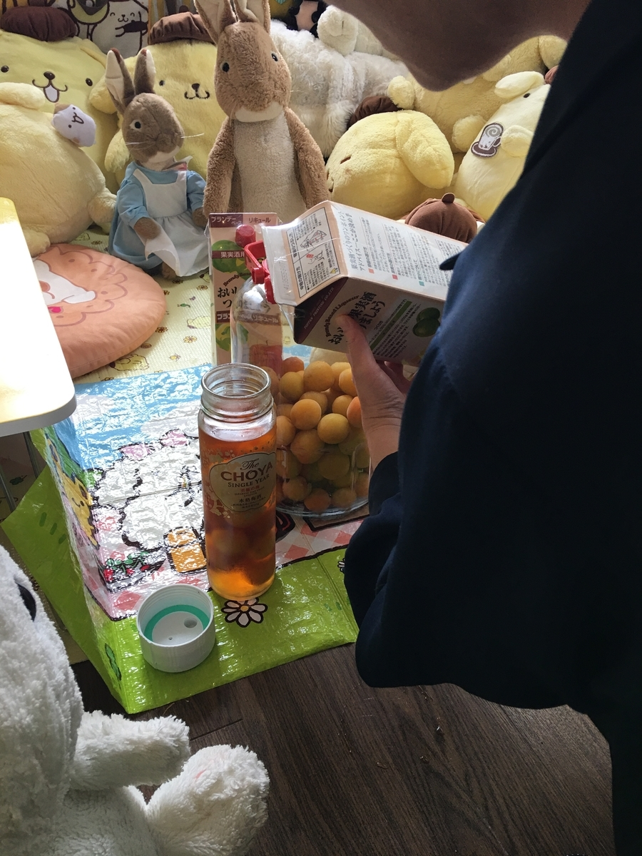 亀戸天神の梅で梅酒を造る