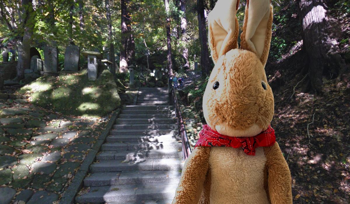 山寺 石階段 何段