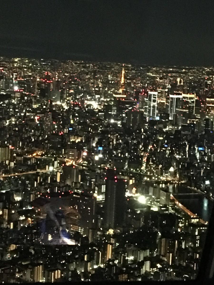 東京スカイツリー夜景フリー画像2