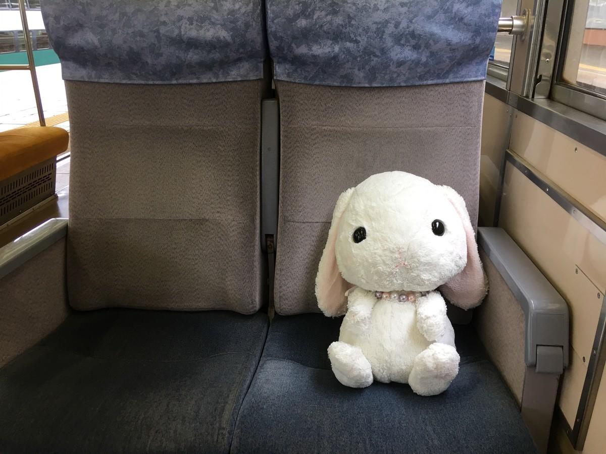 電車の中に置き忘れたぬいぐるみ