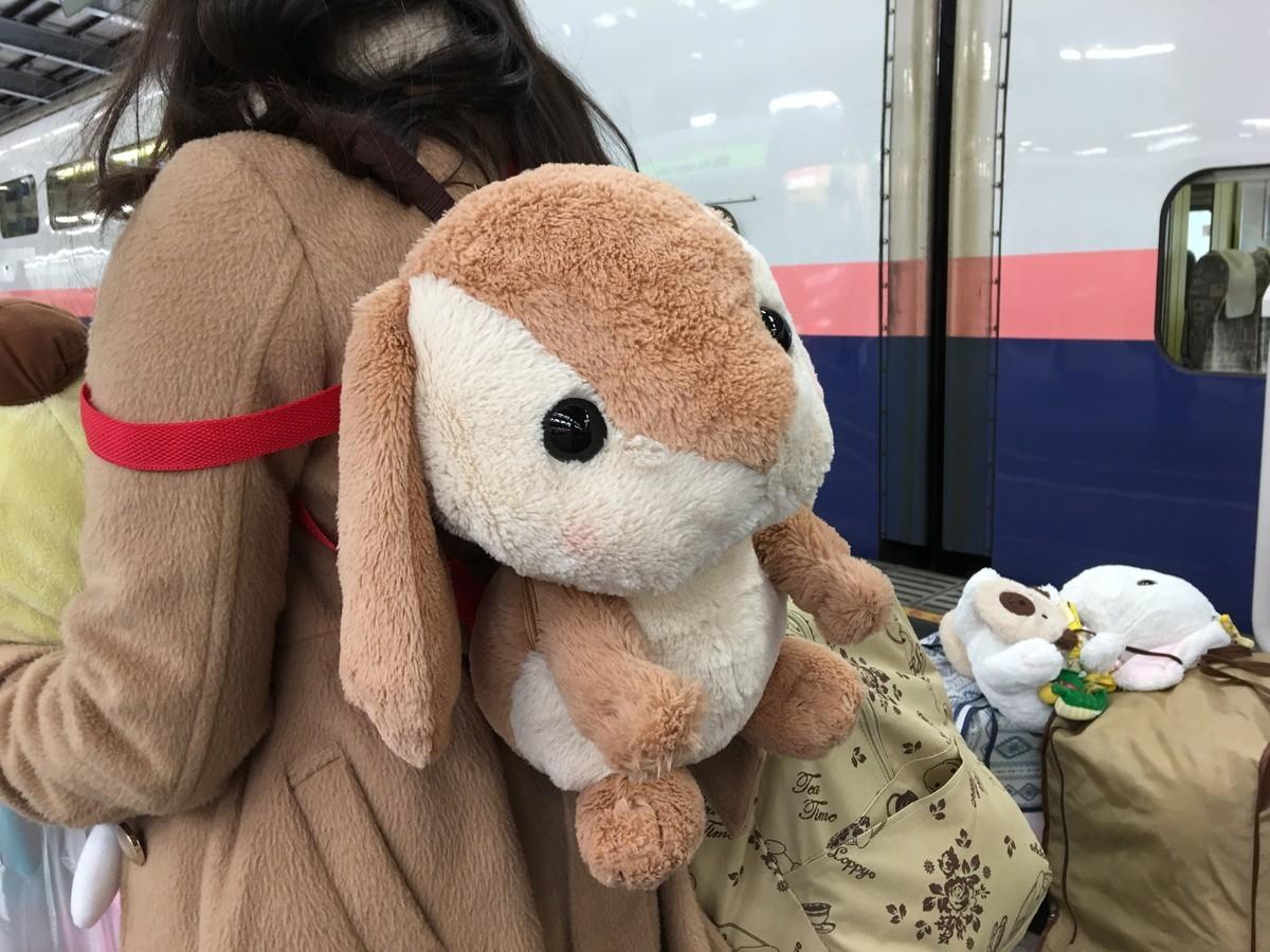 電車好きうさぎも新幹線に乗った話