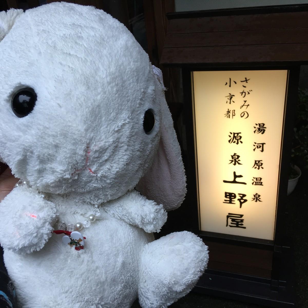 湯河原温泉 源泉かけ流し旅館、無料貸切露天風呂「上野屋」さんへ