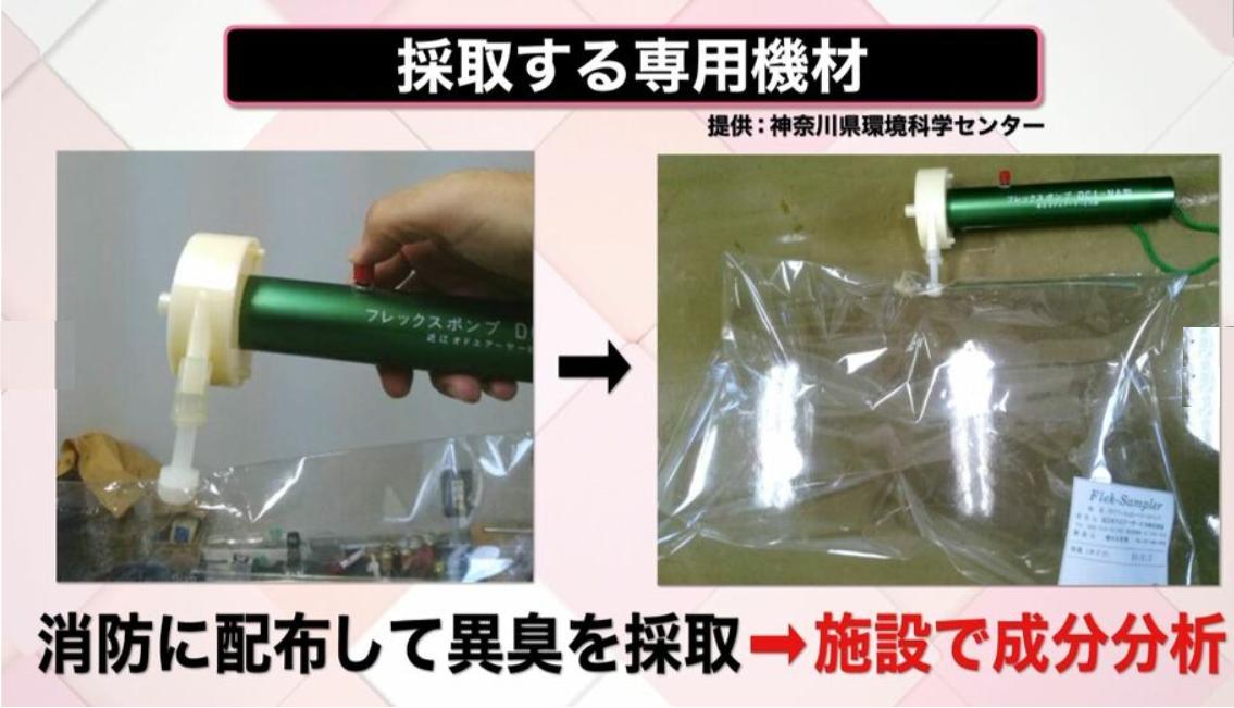 神奈川県科学環境センター 提供
