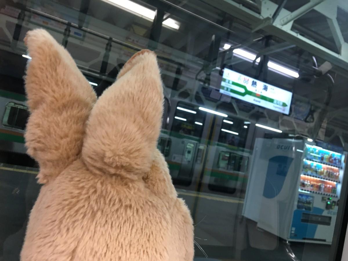 見たことない駅だ!