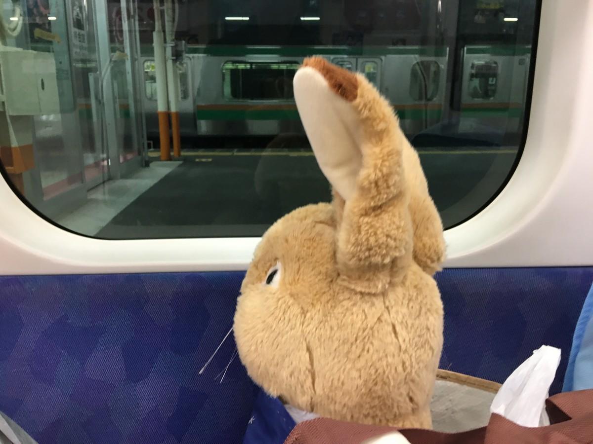 ふと気が付くと電車の中でした