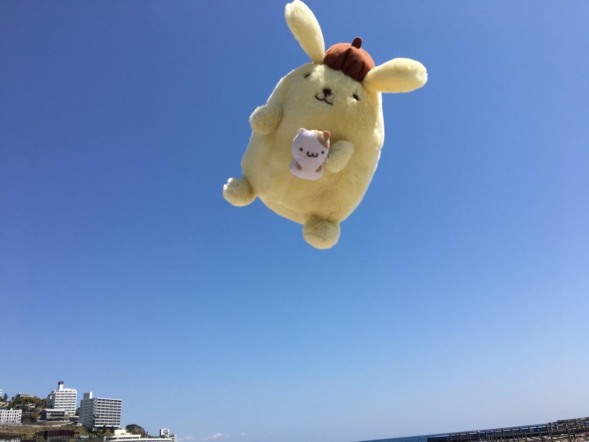 空飛ぶポムポムプリン