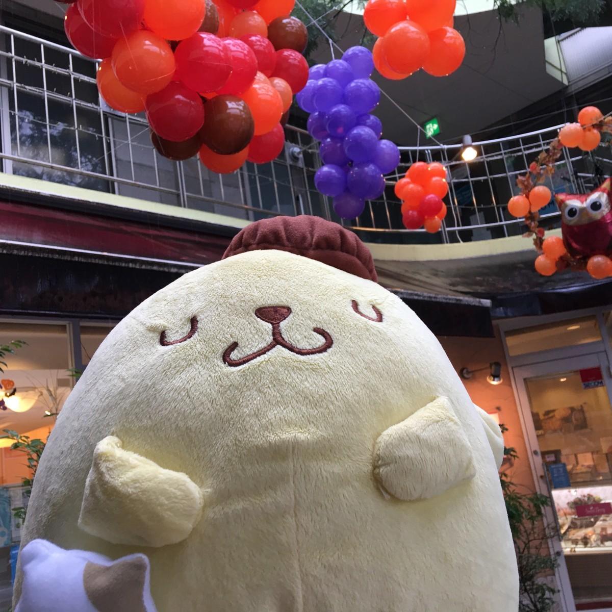 小田原でGoToキャンペーン地域共通クーポン券が使えるケーキ屋さん