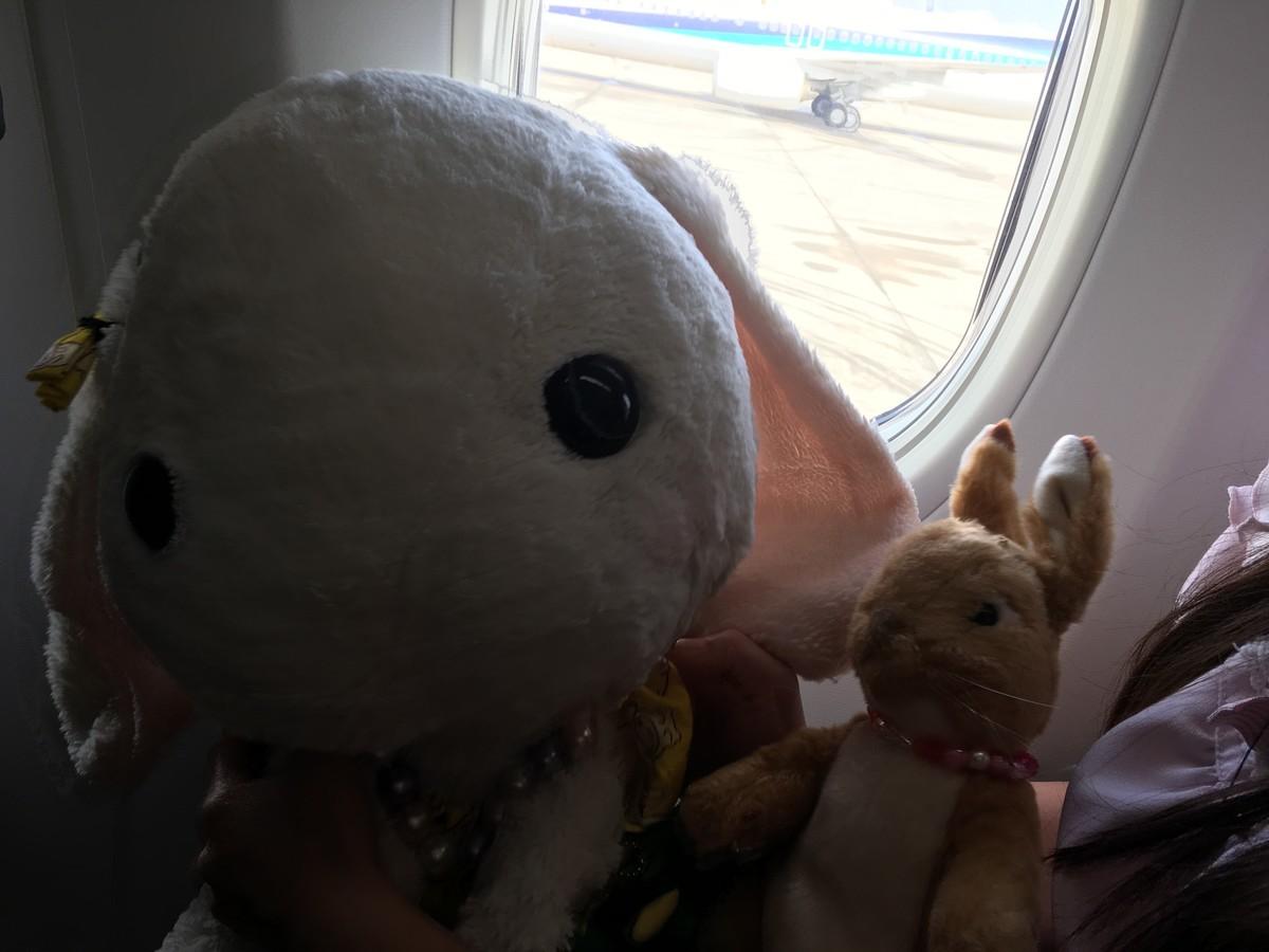 飛行機機内へのぬいぐるみの持ち込み方法
