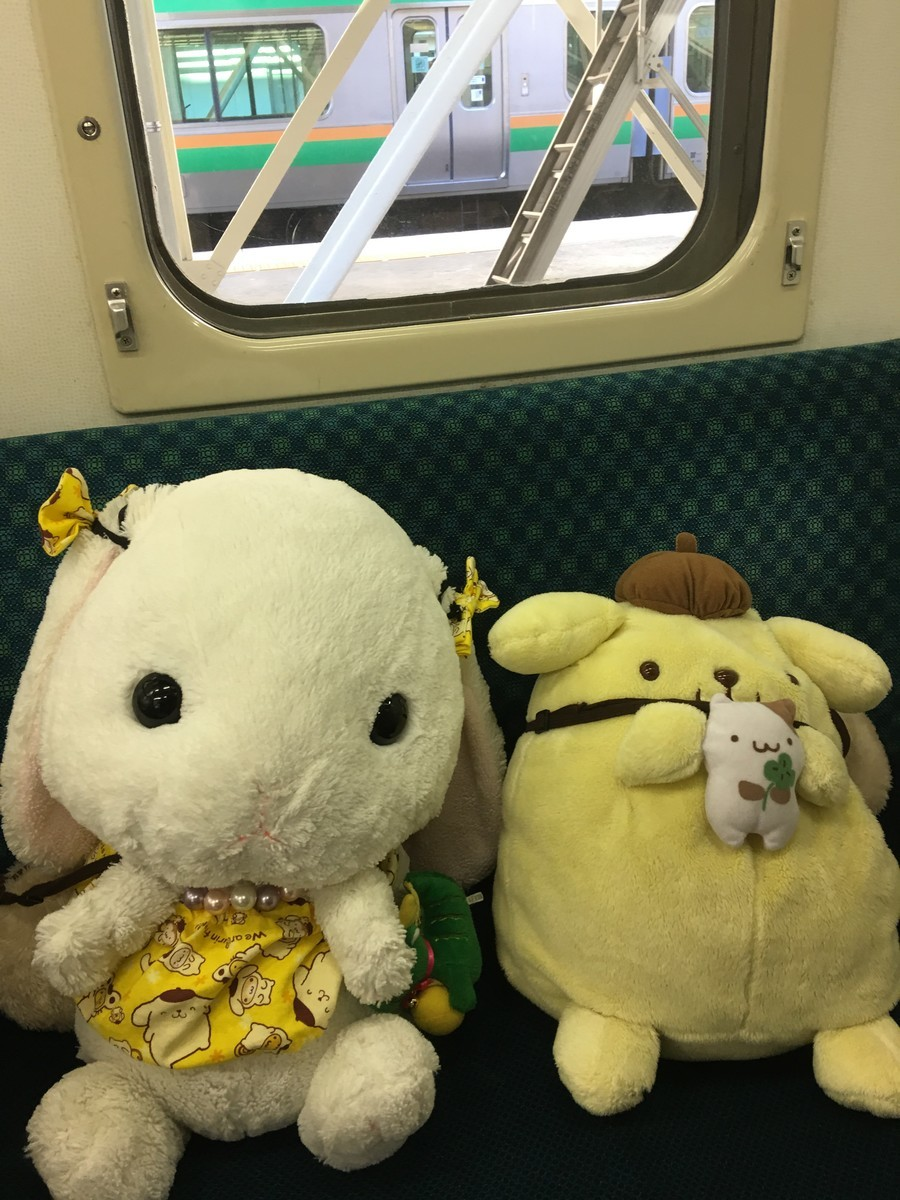 ソーシャルディスタンスにぬいぐるみが活躍!ぬいぐるみを電車の席に座らせる