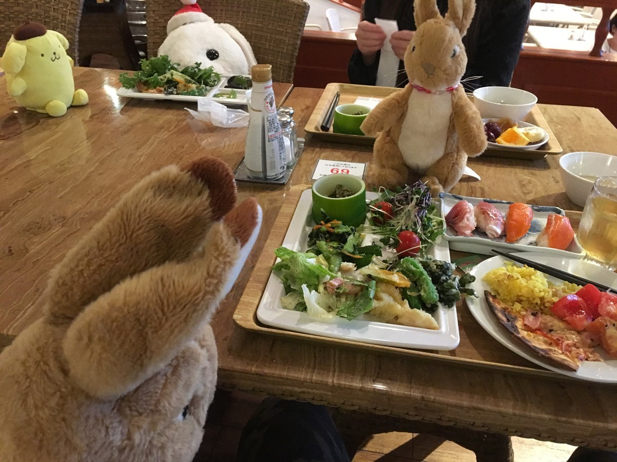 お待ちかね!夕食の時間です