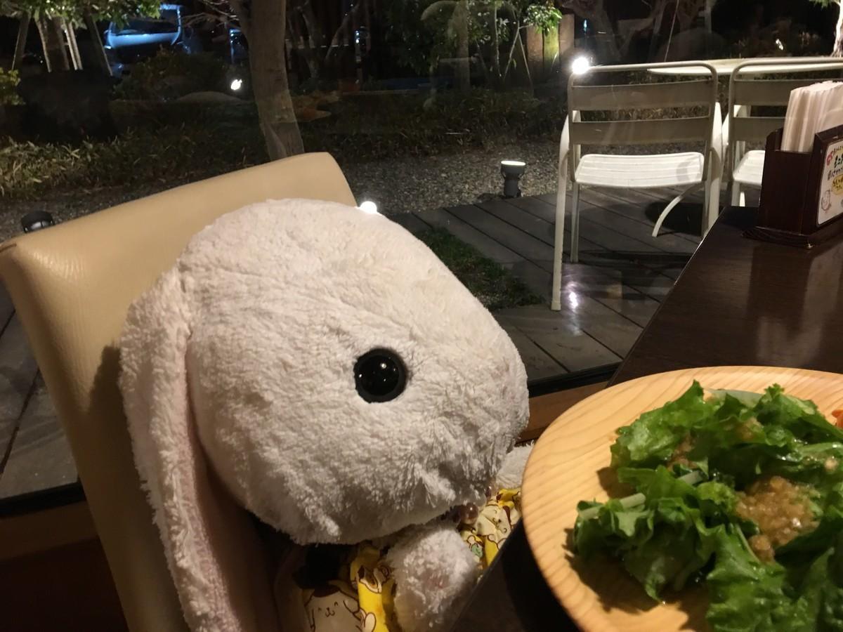 夕食はお野菜を食べました
