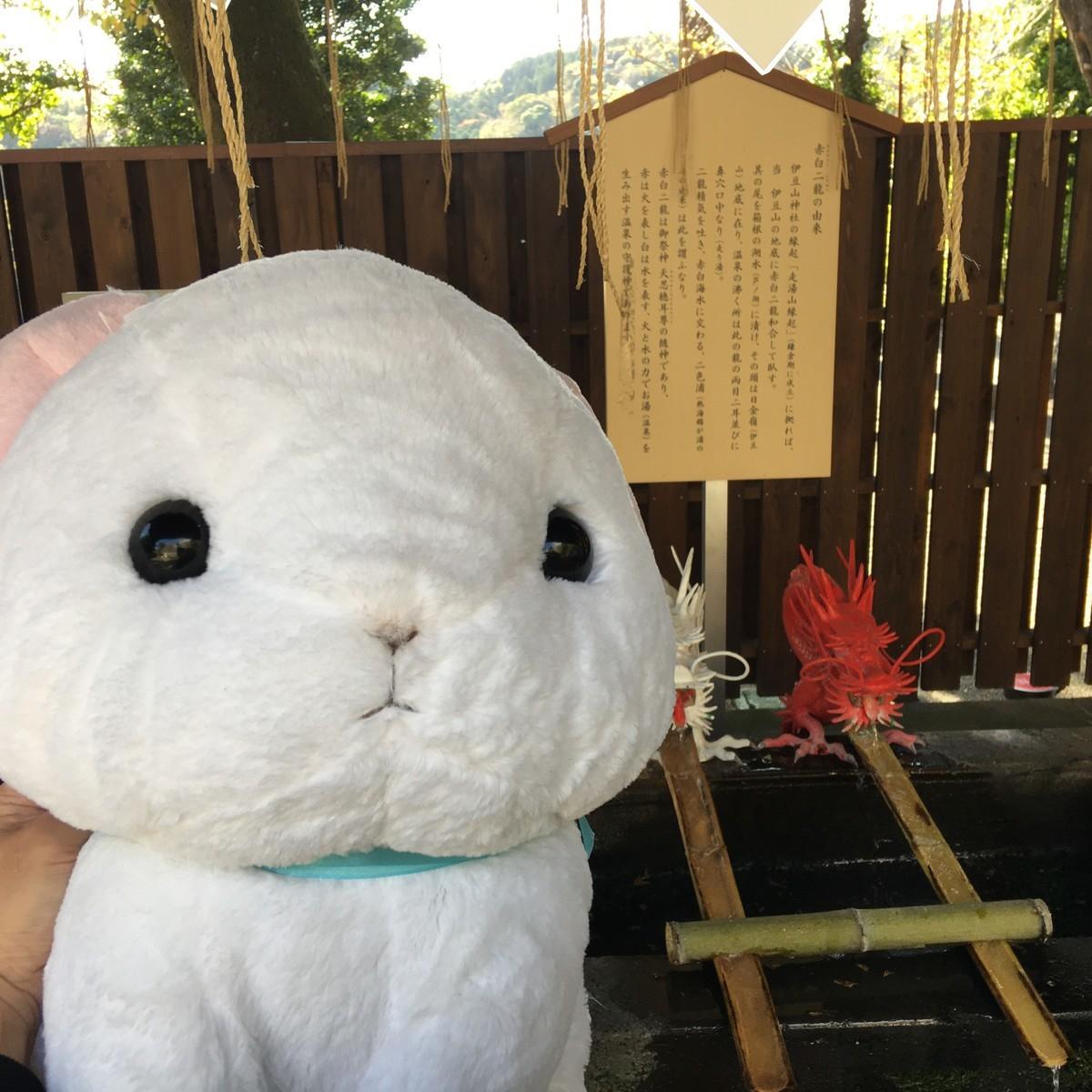 伊豆山神社 手水舎