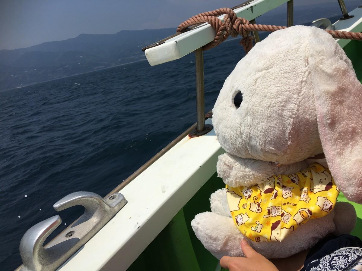 恐る恐る海を眺めるうさ次郎