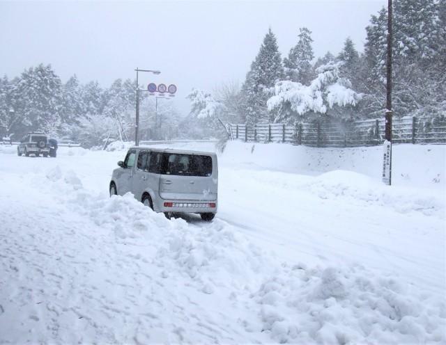 1月12日午後から首都圏で大雪!平野部でも積雪!早めの帰宅を!
