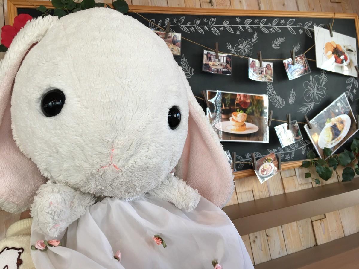 全国の湘南パンケーキのお店