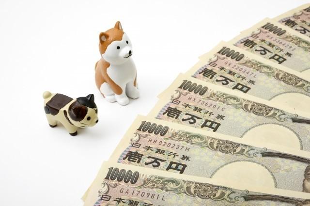 政府が最大200万円!無利子、無担保、保証人審査無し、返済免除、融資