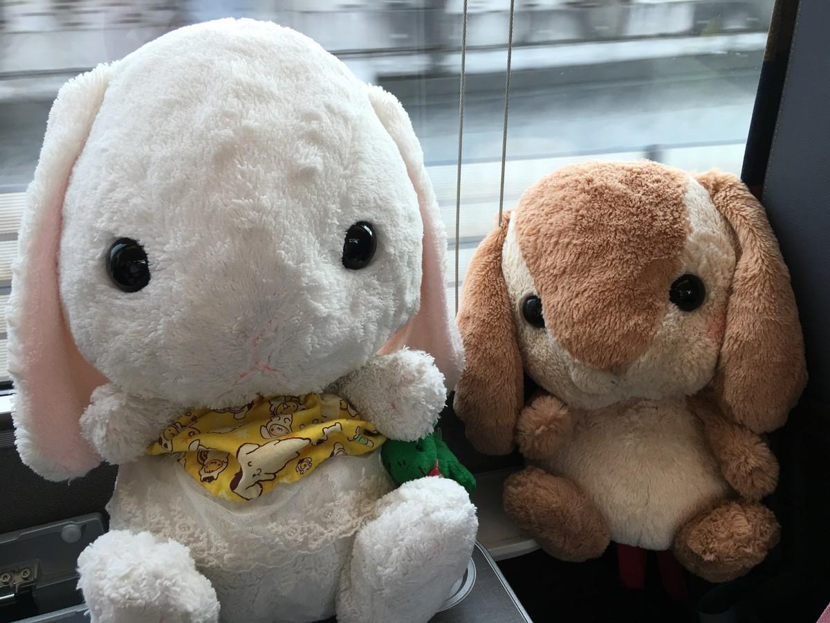 列車の旅!新潟へ