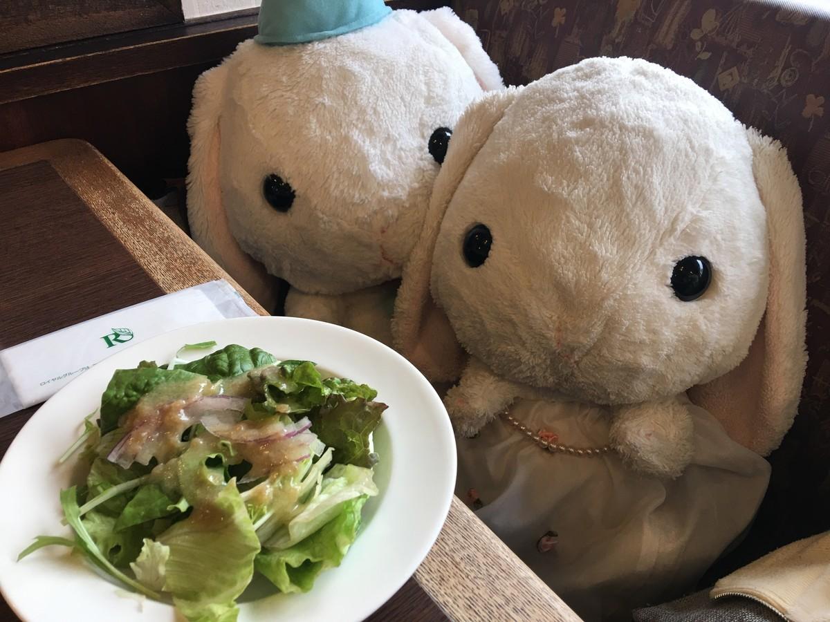 モーニングサラダ 100円