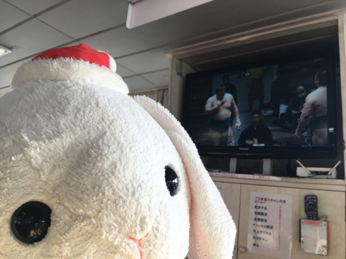 船内テレビでお相撲観戦