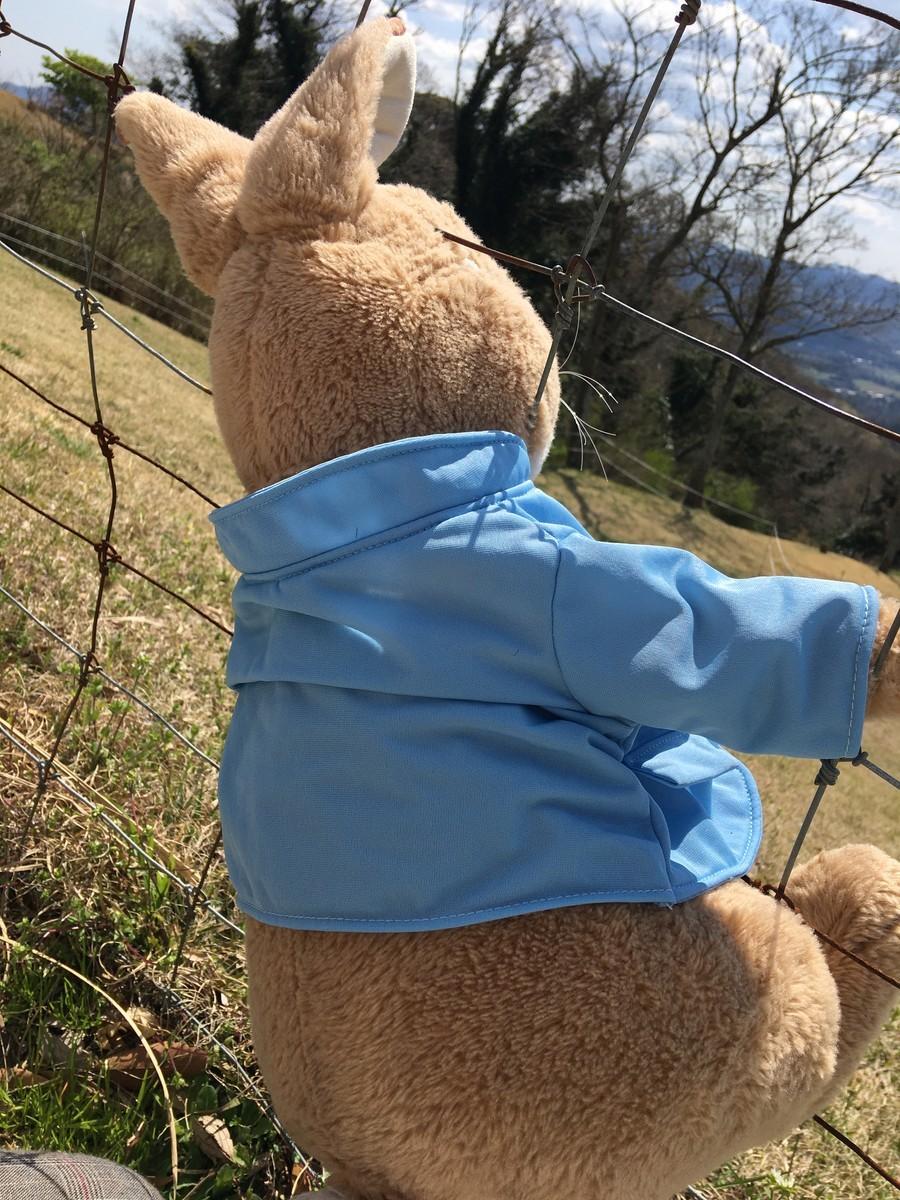 羊の行進を見るラビットちゃん