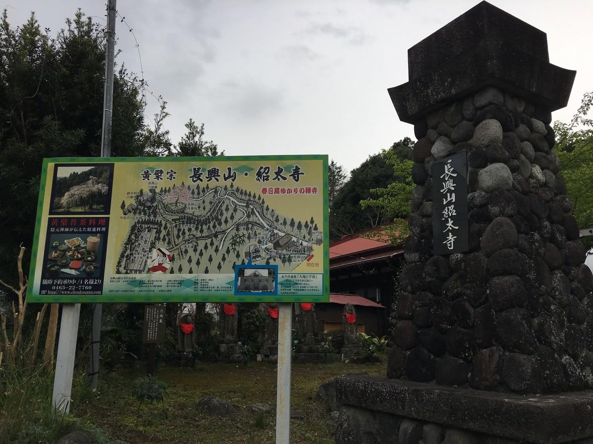 入生田のしだれ桜!長興山紹太寺、無料駐車場と最短ルート