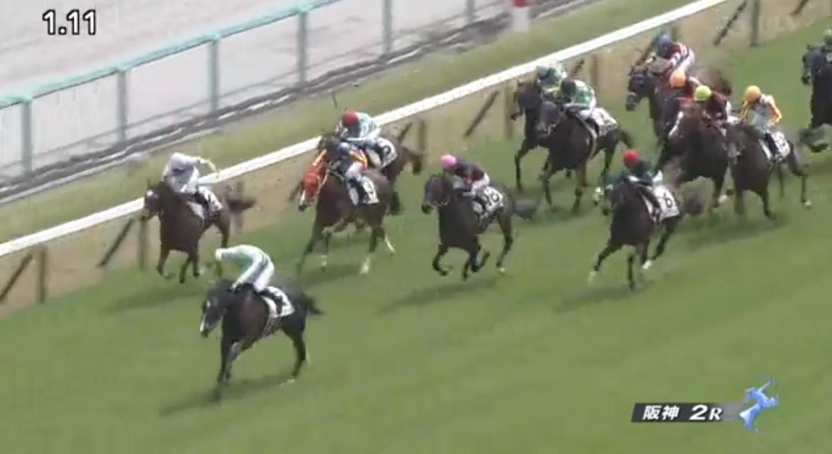 動画!阪神競馬場6R映像!瞬間映像岩田康誠騎手が幅寄せ暴言!スウィープザボード