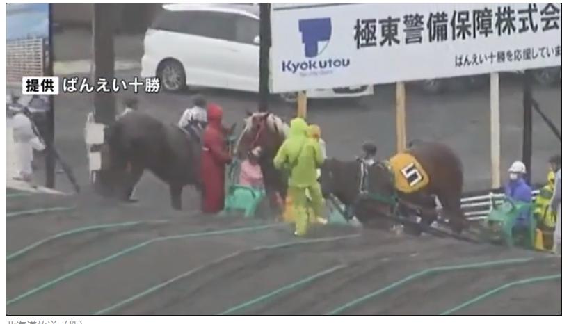 瞬間映像!ばんえい競馬で別の厩務員も馬の顔を蹴っていた!